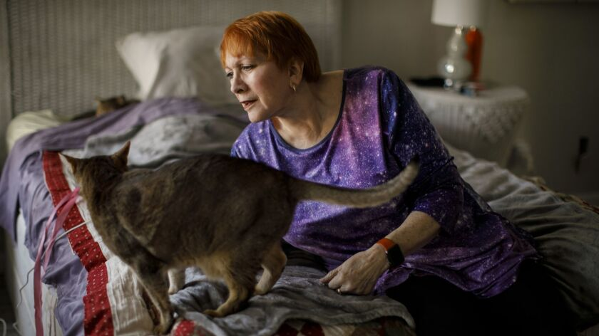 Artist Lilli Heart, who escaped the Camp fire with her cats Keeper and Kinde, has found refuge at her friend's home in Cottonwood, Calif.