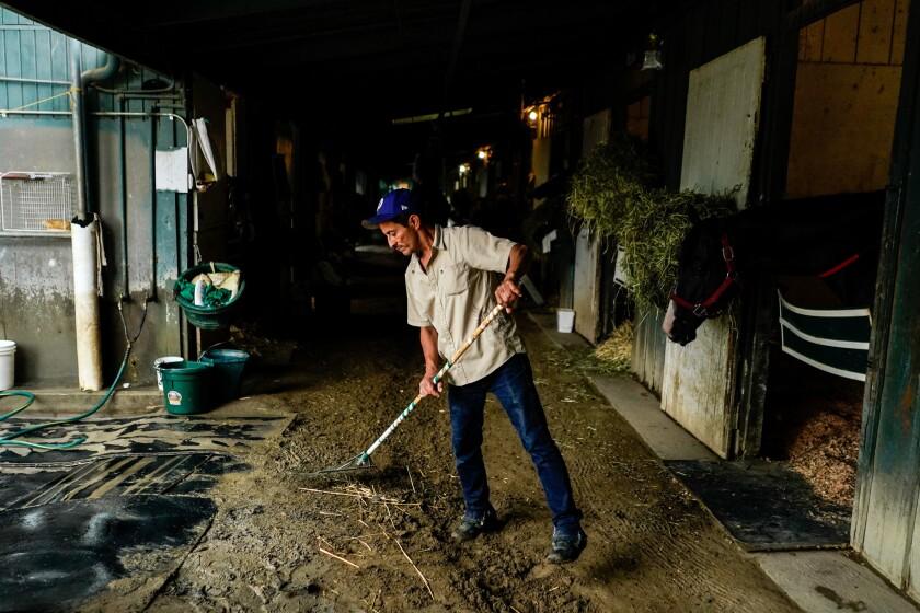 SANTA ANITA, CALIF. - JUNE 20: A back stretch worker at Herctor Palma's stablesat the Santa Anita Pa