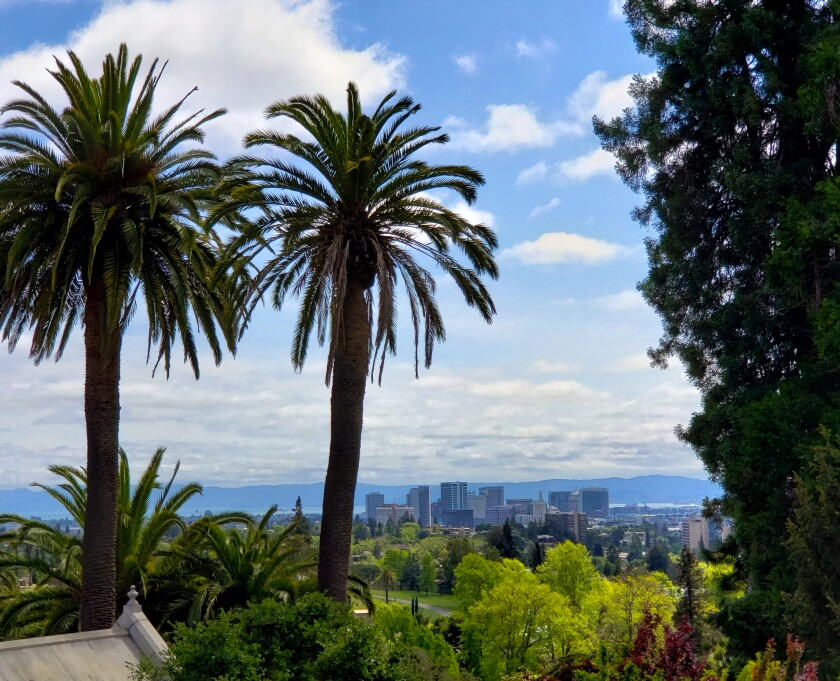 Some of the best views of downtown Oakland, the bay and San Francisco can be taken from the Mountain View Cemetery, a historic visitor destination in its own right, nestled in the hills above the city.