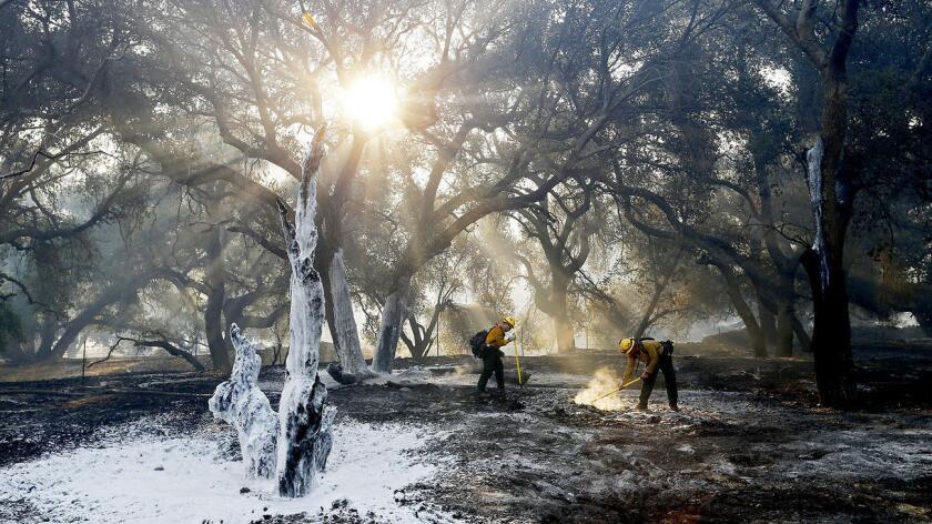 Las evacuaciones se ordenaron para los residentes en los cañones de Sand y Placerita, al norte de Los Ángeles, indicó el Departamento de Bomberos del condado.