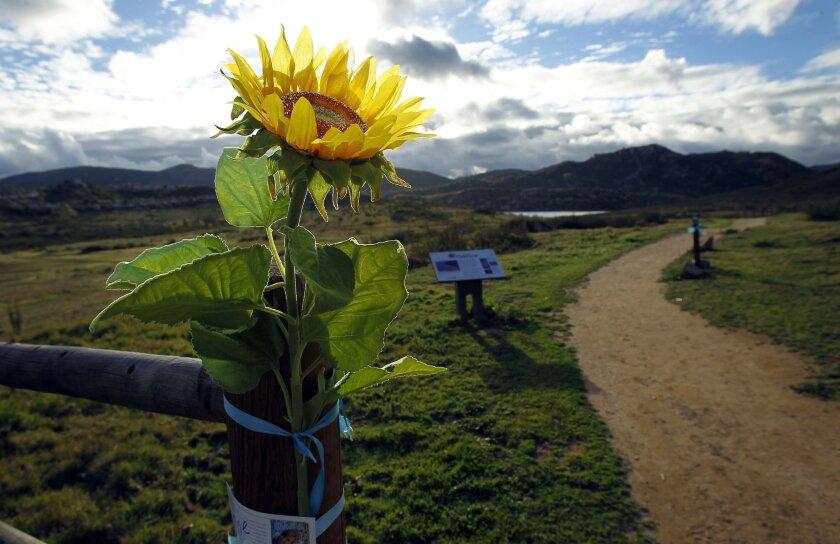 A trail in Rancho Bernardo Community Park