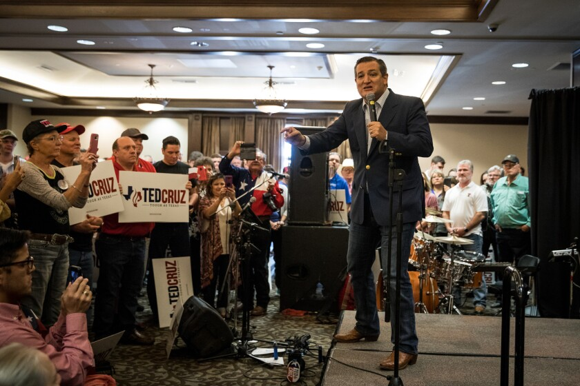 Sen. Ted Cruz (R-TX) addresses the crowd during a campaign rally at The McKenzie-Merket Alumni Cente