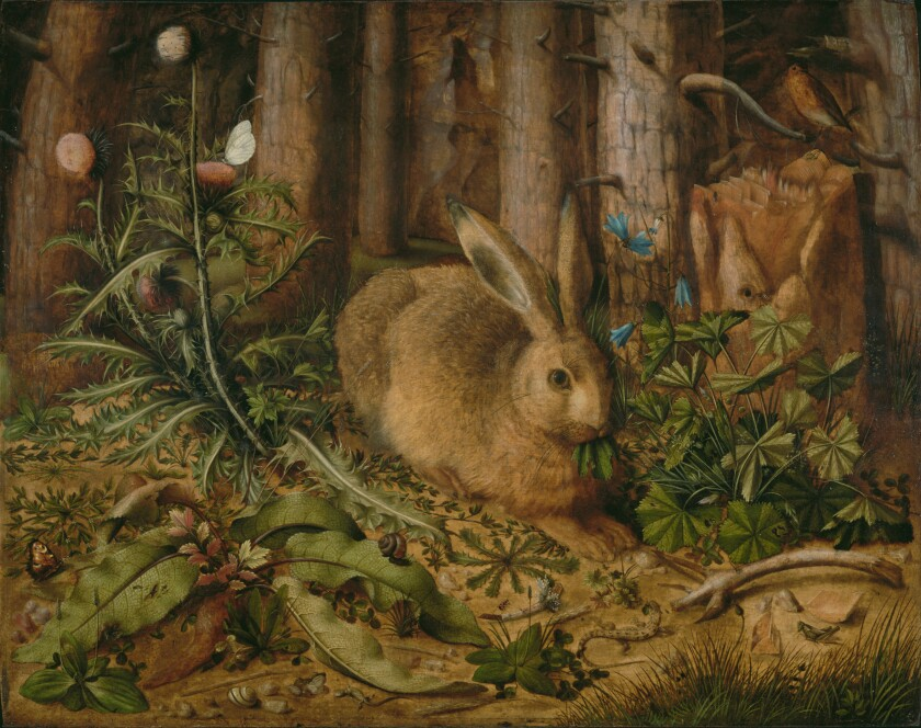 "Hans Hoffmann, ""A Hare in the Forest"""