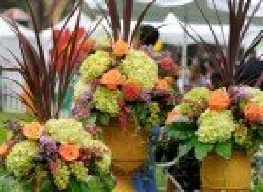 Best-Bet.Coronado-Flower-Show-Previous-150x110