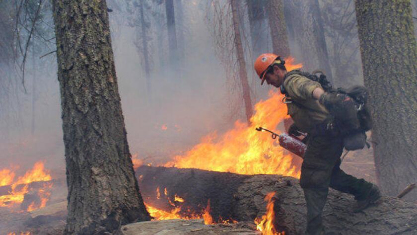 Los incendios dañaron tanto tierras estatales como federales
