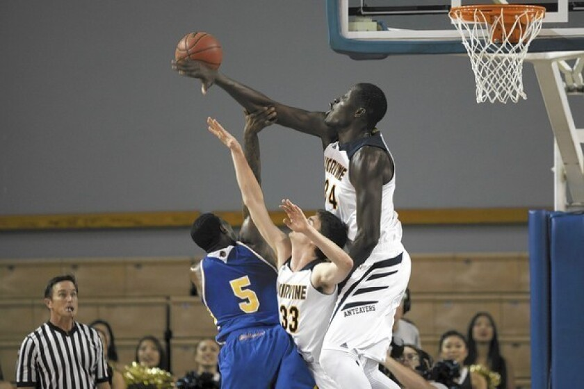 Men's Basketball: UCI alone atop Big West