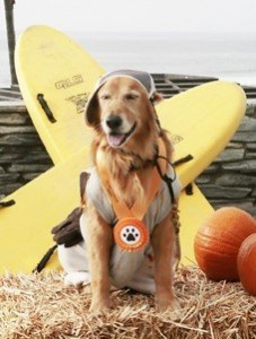 The Halloween Dog Parade and Costume Competition will be held on Oct. 26 at 3 p.m. at Powerhouse Park in Del Mar.