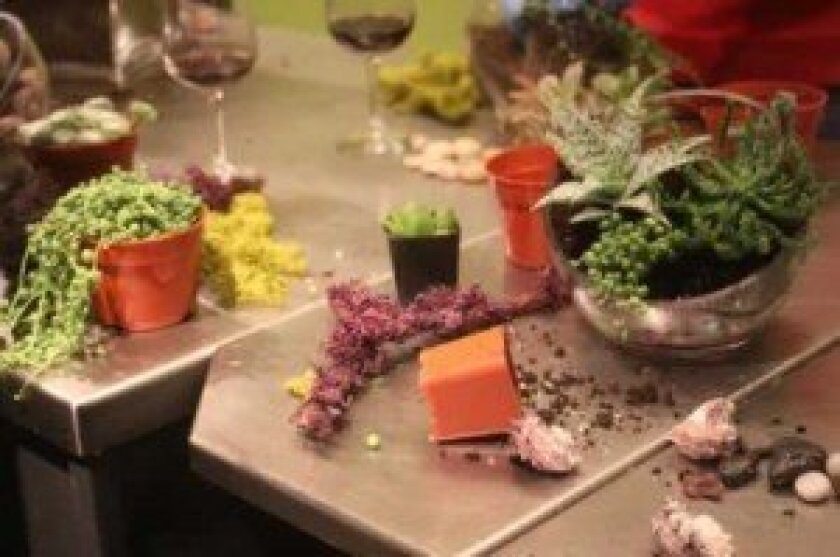 Participants experiment with different plants and layers.