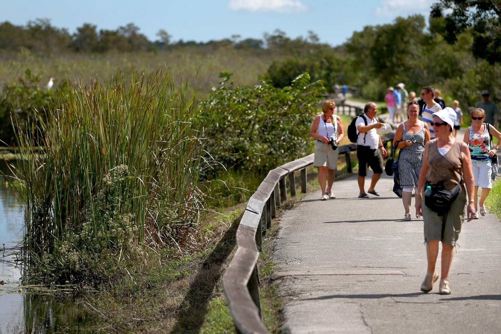 Everglades National Park  |Everglades National Park Ecosystem