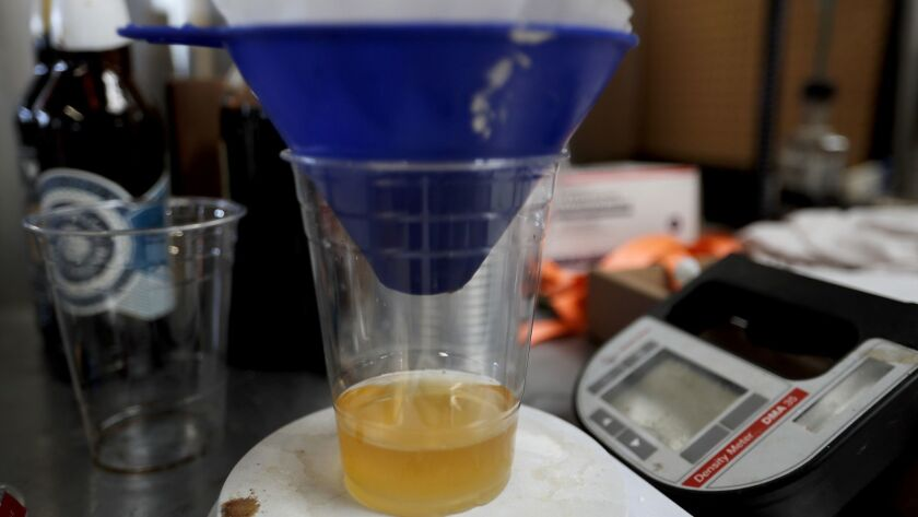 EL SEGUNDO, CALIF. - MAY 22, 2019. Beer is filtered before being tested for alcohol content at Three