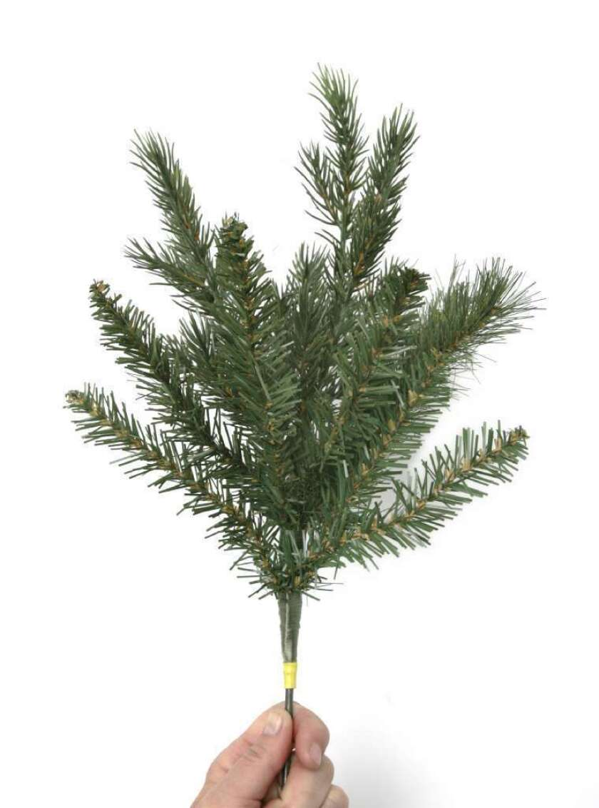 Scientists sequence Norway spruce DNA. The tree's genome is LONG