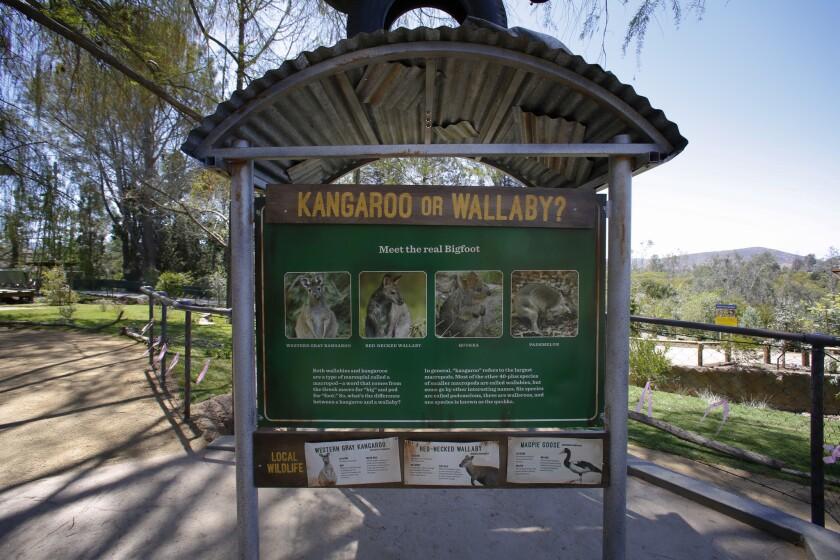 Walkabout Australia