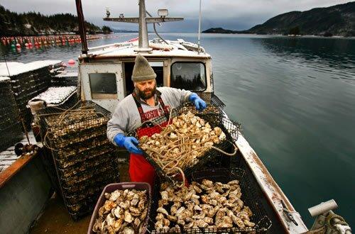 la-oyster1-jbosdfnc