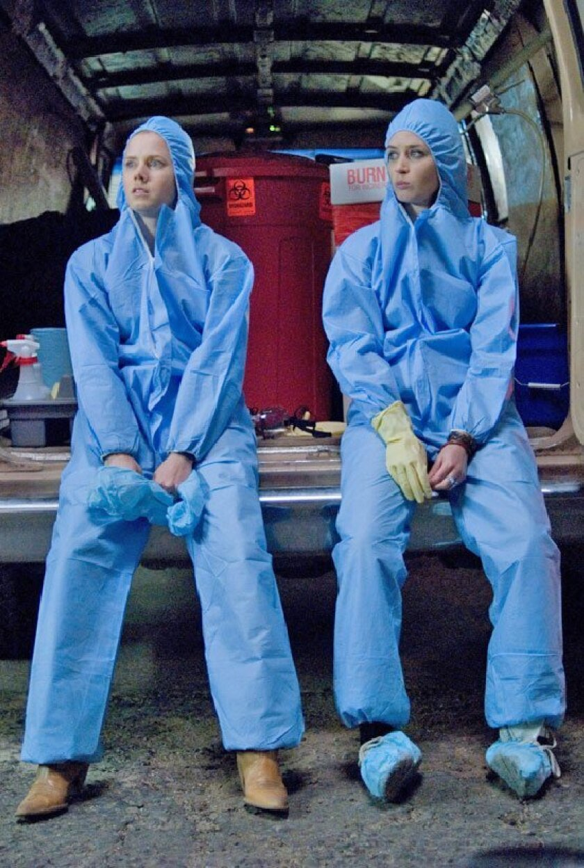 Rose (Amy Adams, left) and Norah (Emily Blunt) Lorkowski  don biohazard removal suits in 'Sunshine Cleaning.' Below:(Lacey Terrell)