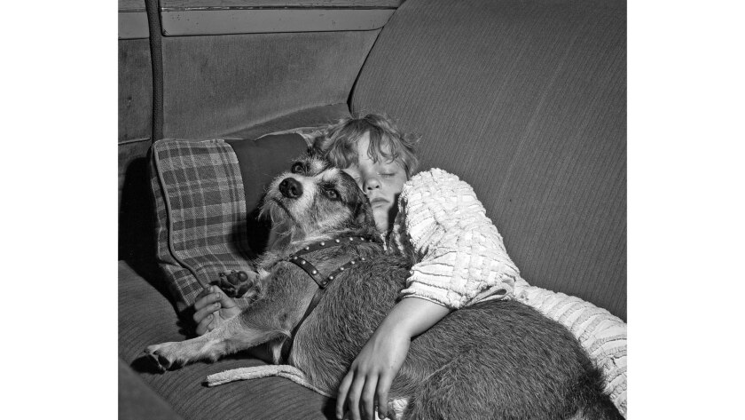 June 17, 1947: Linda Henderson, 7, told police she had no place to live after she and her dog were found sleeping in a car.