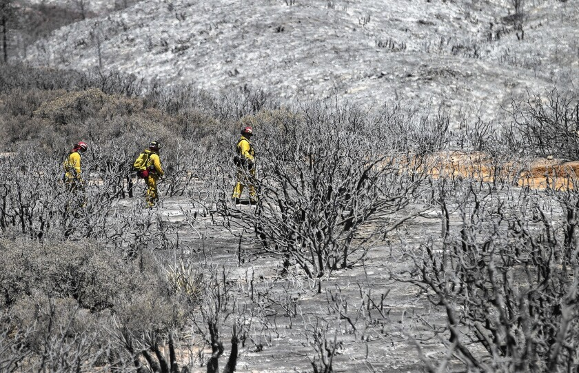 Firefighters look for hot spots from the Anza fire, burning southeast of Hemet in Riverside County.