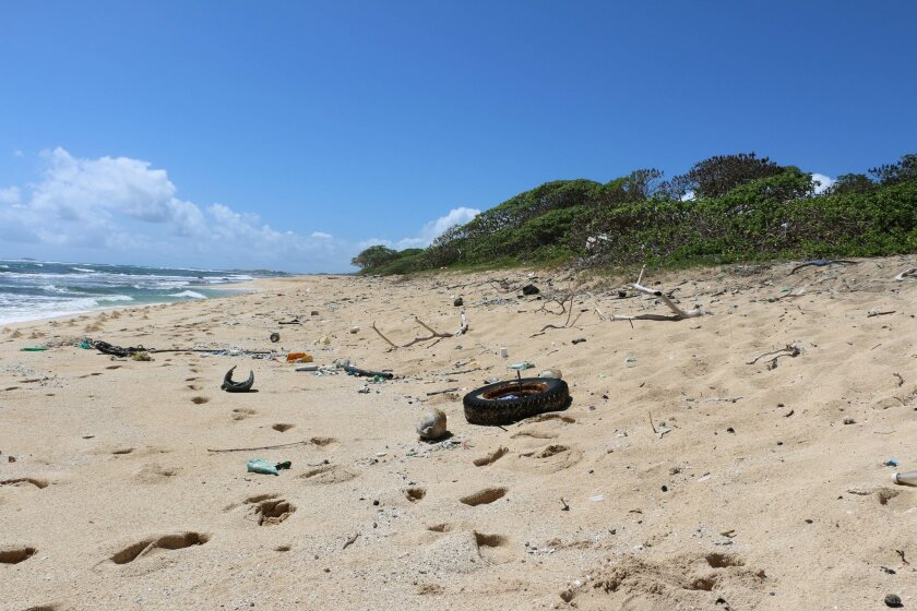 In this May 5, 2016 image provided by the state of Hawaii, ocean debris accumulates in Kahuku, Hawaii on the North Shore of Oahu. State officials say a study of the eight main Hawaiian Islands shows that ocean debris regularly accumulates around the archipelago, and that most of it is not linked to