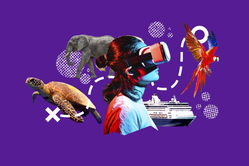 An illustration of a parrot, elephant, sea turtle and cruise ship and someone wearing a virtual reality headset.
