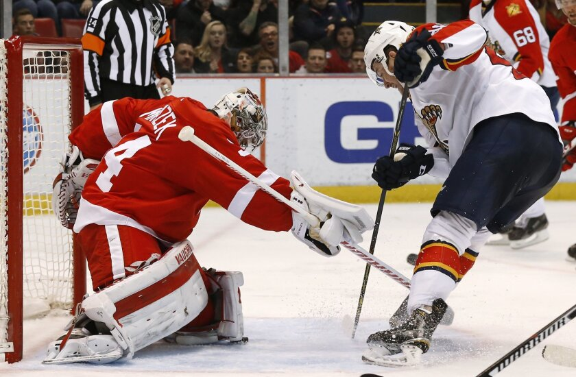 Detroit Red Wings goalie Petr Mrazek (34) stops a Florida Panthers right wing Logan Shaw (48) shot in the third period of an NHL hockey game, Monday, Feb. 8, 2016 in Detroit. (AP Photo/Paul Sancya)