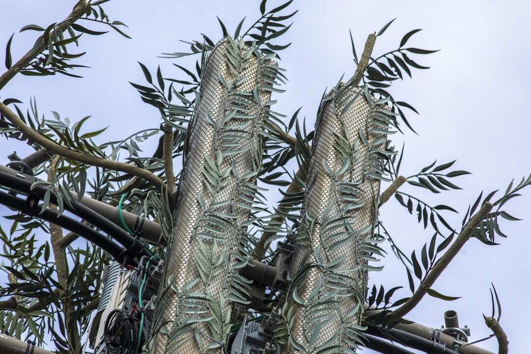 A detailed image of eucalyptus leaves on a cell tower.