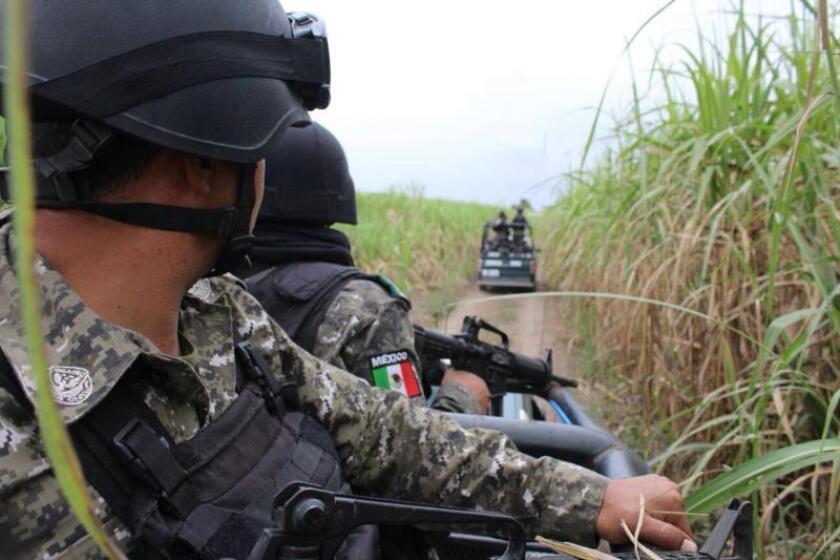 Según reportes oficiales, los cuerpos fueron abandonados en dos hechos distintos en la zona centro y norte de Veracruz, una región que lleva una década sumida en una espiral de violencia relacionada con la operación de bandas del narcotráfico. EFE/STR