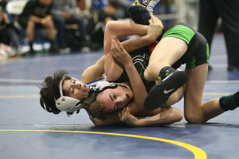 Photo Gallery: Local wrestlers in Five Counties Tournament