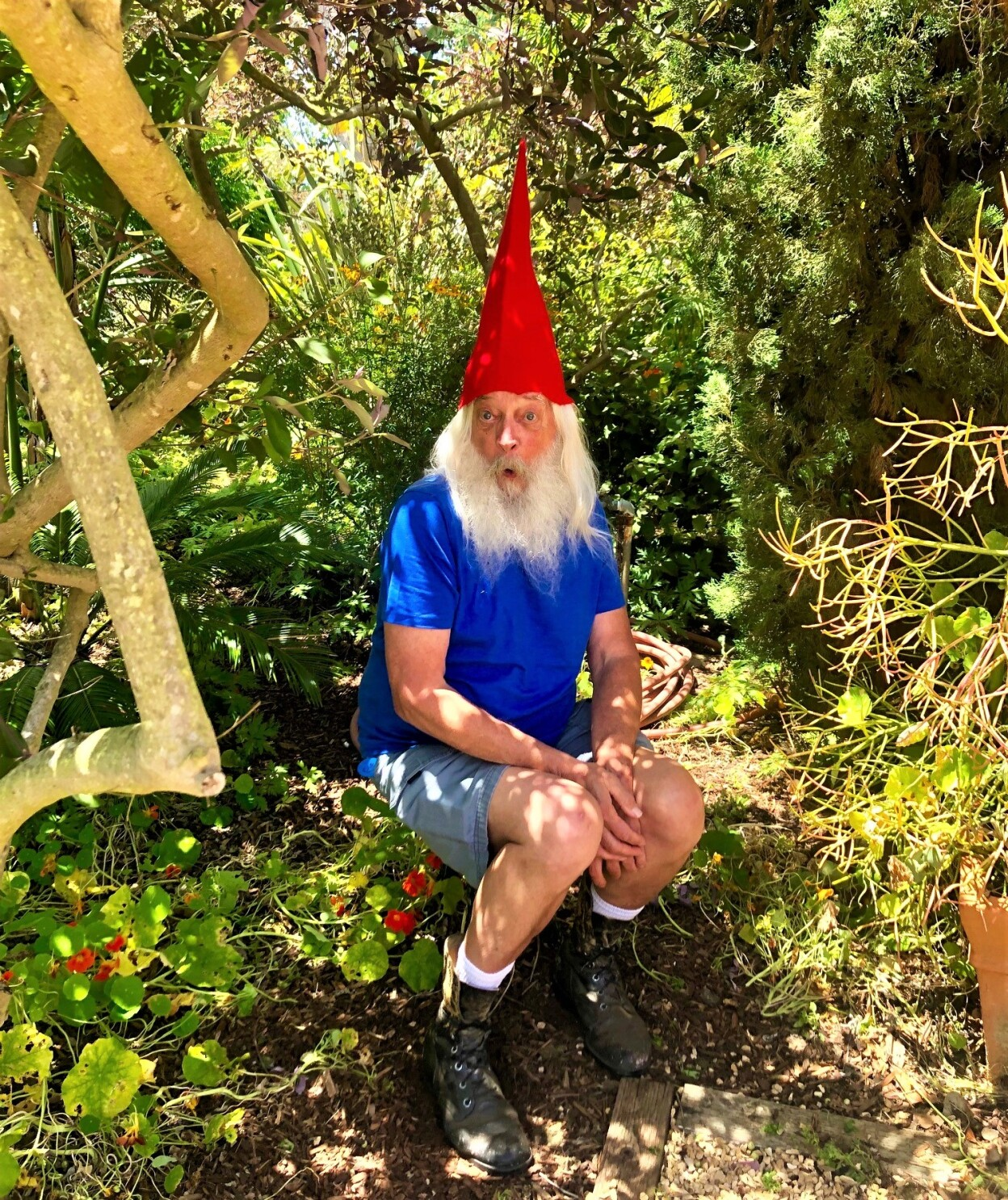 La Jolla Historical Society's Bill Carey leads a secret life as a