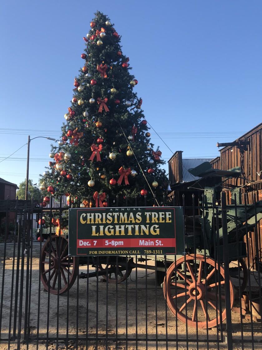 Ramona Christmas tree 2019