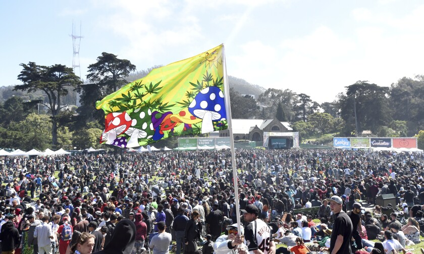 A large crowd packs a field beneath a flag of cartoon mushrooms.