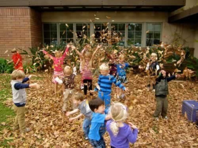 Kindergarten and preschool students at The Gillispie School celebrate autumn in style, playing in leaves and collecting them for a composting project last week. Courtesy