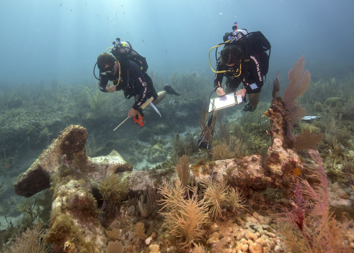 What are your national park memories? Maybe some of these photographs will jog your thinking. Dry Tortugas National Park is located 70 miles from Key West, Fla. Many of its treasures are underwater. National Park Service archaeologists (pictured) document a historic anchor at the park created in 1935.