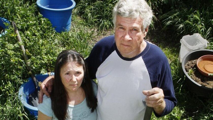 Dennis and Deborah Little stand in their Ramona garden in 2013 where they say they once cultivated marijuana plants for medicinal use. Each has a doctor's recommendation for medical marijuana.