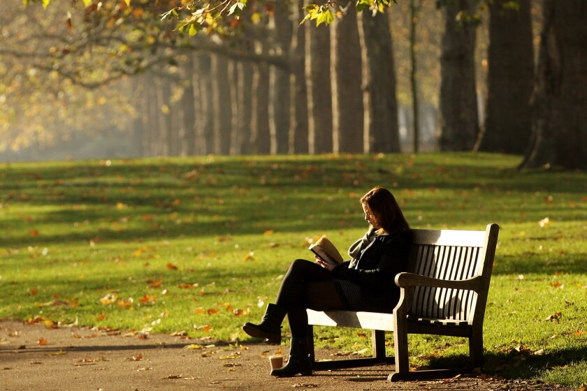 A woman reads alone in Hyde Park, London, England.