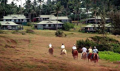 Horseback in Hana