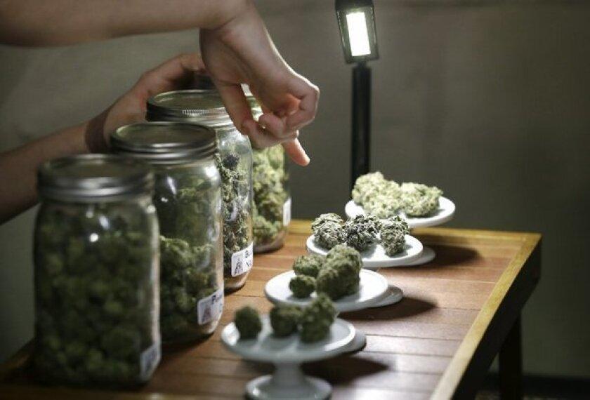 Doctors debate telling patients to smoke marijuana