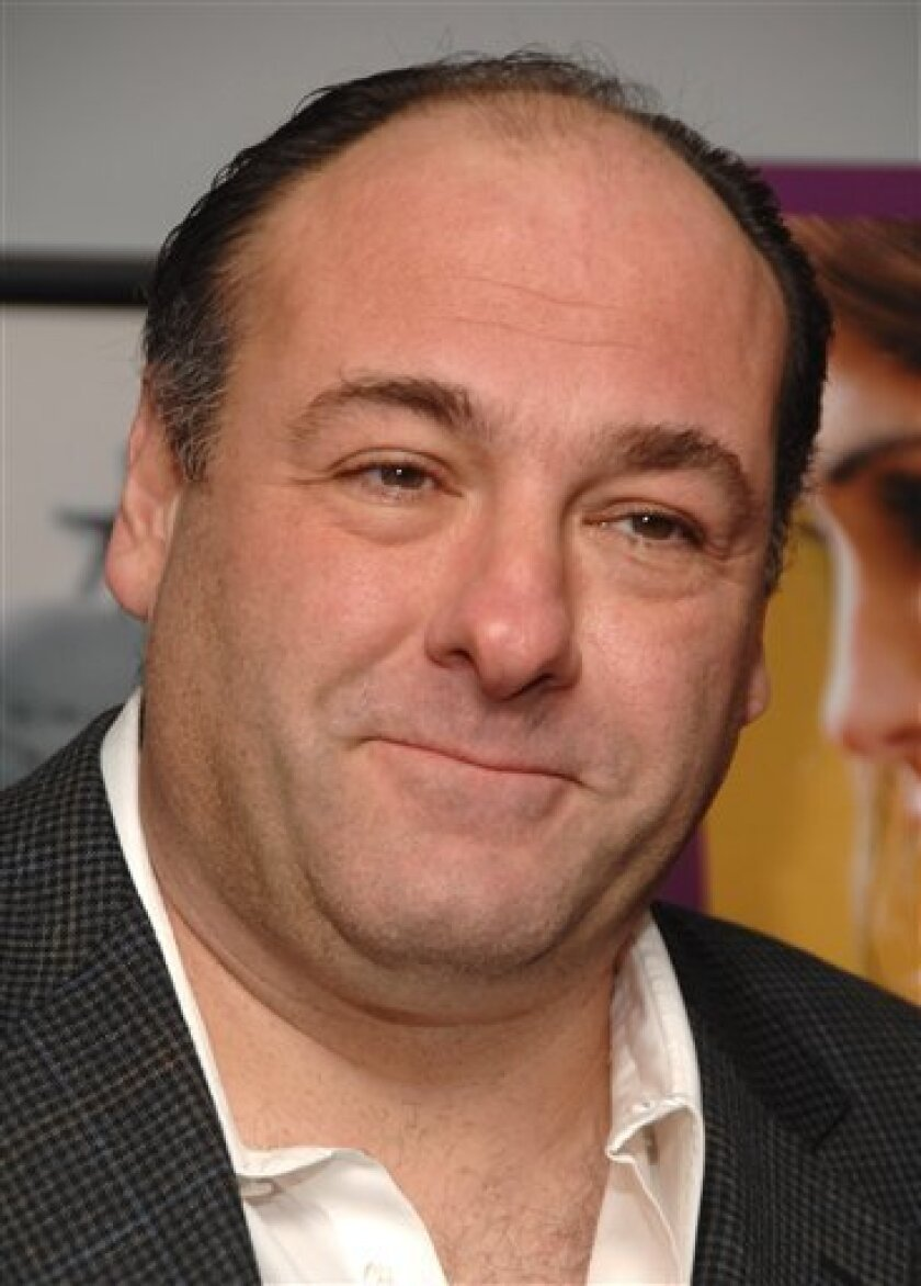 "In this Dec. 13, 2008 file photo, actor James Gandolfini attends the premiere of FX Networks ""Damages.""  (AP Photo/Peter Kramer, file)"