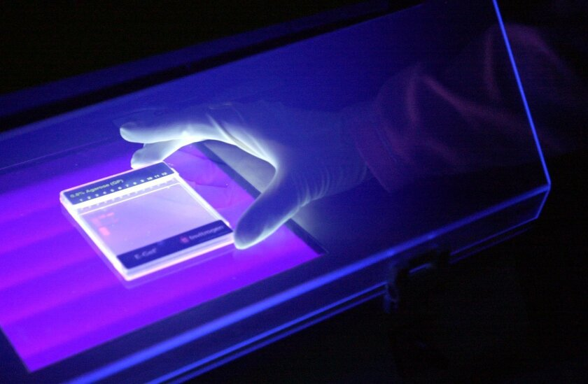 A custom cloning product fluoresces under ultraviolet light in a dark room at Invitrogen's Carlsbad headquarters in 2005.