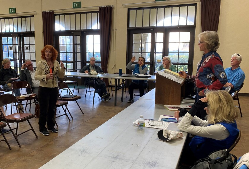 During the Feb. 24 La Jolla Parks & Beaches meeting at the Recreation Center, La Jolla Village Merchants Association executive director Jodi Rudick (left) attempts to convince the board not to pass a moratorium on recommending new, for-profit events in Scripps Park.