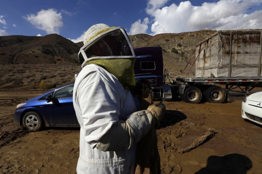 Workers remove a stranded tractor-trailer carrying live bees on Highway 58 near Tehachapi on Saturday.