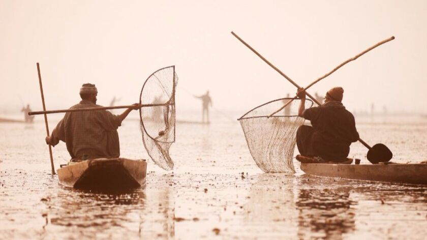 Kashmiri fishermen in India use their nets to catch fish in the waters of the Anchar Lake on a cold day in Srinagar on Dec. 20, 2016.