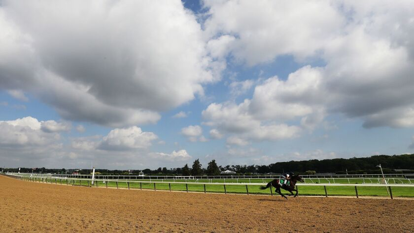 151st Belmont Stakes - Previews