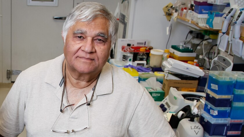 Salk Institute cancer biologist Inder Verma has, at least temporarily, lost his position as editor-in-chief of the renowned journal Proceedings of the National Academy of Sciences.