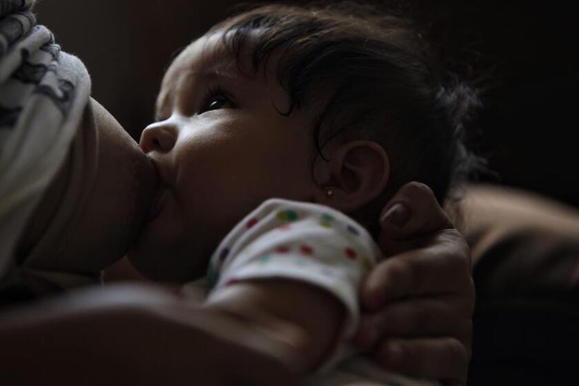 Organizaciones de la sociedad civil, académicos, organismos internacionales y legisladores pidieron hoy al próximo gobierno de México, que encabezará Andrés Manuel López Obrador a partir del 1 de diciembre, promover y apoyar la lactancia materna en el país. EFE/ARCHIVO