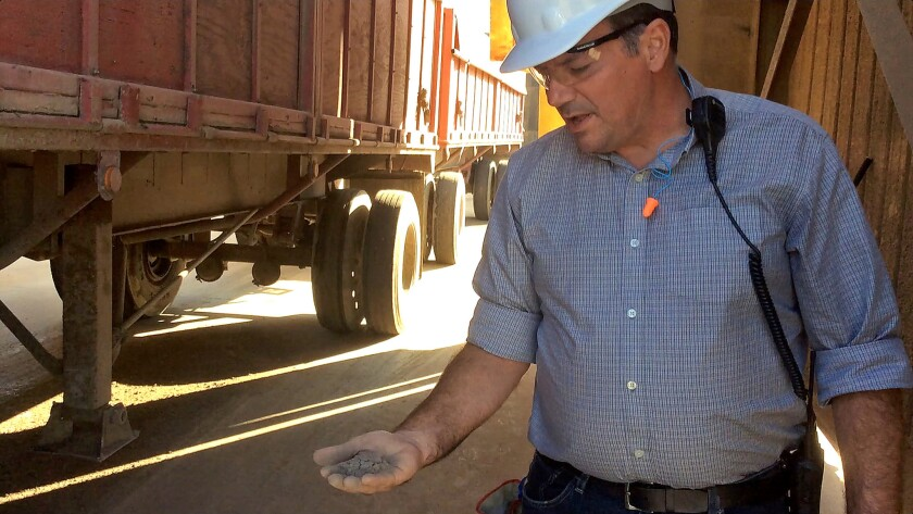 Rick Spurlock holds some of the ash residue that is repurposed as ground cover for dairy cattle facilities.