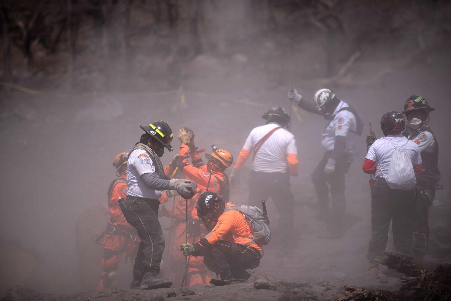 Rescatistas continúan las labores de búsqueda y rescate en el área de El Rodeo, en el departamento de Escuintla (Guatemala). Los cadáveres de ocho víctimas de las erupciones del volcán de Fuego fueron rescatados hoy por las brigadas de búsqueda en una comunidad del departamento sureño de Escuintla, constató un fotógrafo de Efe, lo que elevó a al menos 84 la cifra de muertos. Los cuerpos fueron hallados entre los escombros de la comunidad de San Miguel Los Lotes, la cual quedó soterrada bajo miles de toneladas de material volcánico. EFE/Santiago Billy