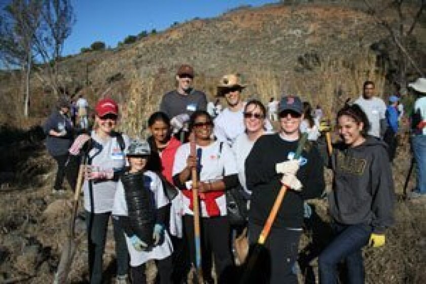 Employees and family of Takeda California planted trees in the Del Dios Gorge on Monday, Jan. 21. Photos/Karen Billing
