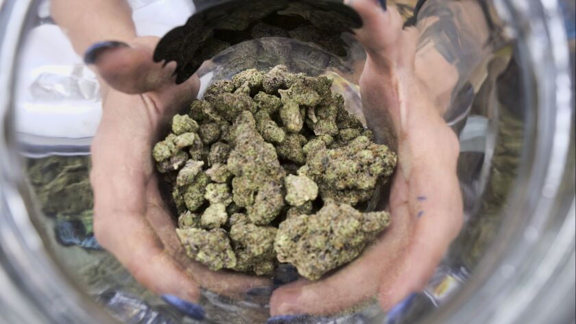 FILE - In this April 21, 2018, file photo a bud tender displays a jar of cannabis at the High Times