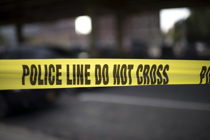 A Waco canine cop was shot Friday by a police officer after it attacked another officer.
