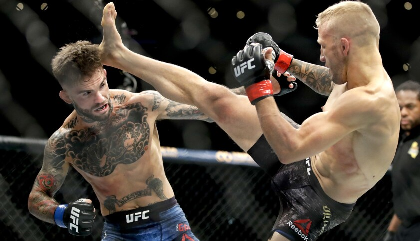 T.J. Dillashaw, right, kicks Cody Garbrandt during their UFC title bantamweight mixed martial arts b