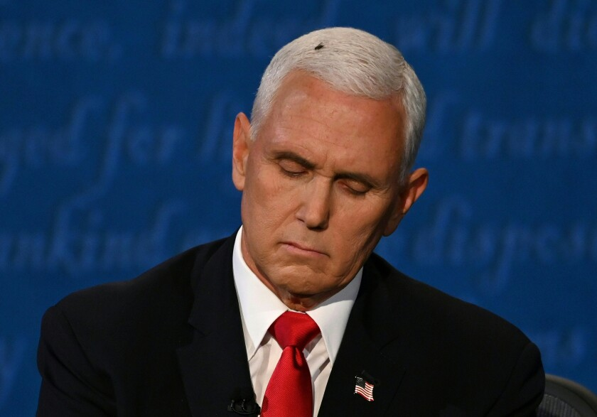 A fly sits on the head of  Vice President Mike Pence